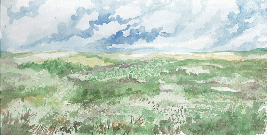 Grassy Landscape I