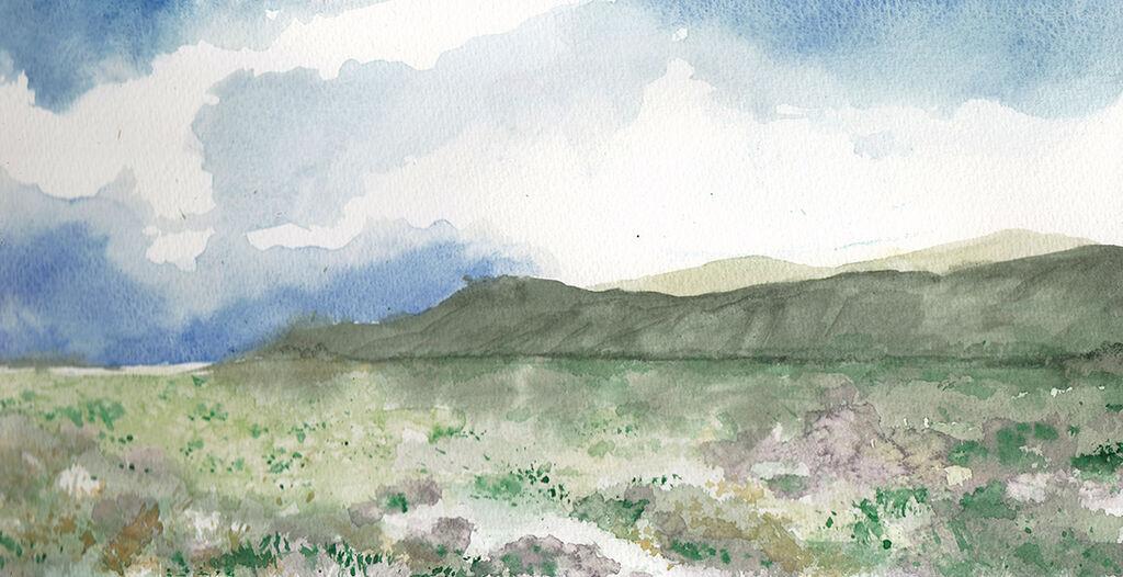 Grassy Landscape II