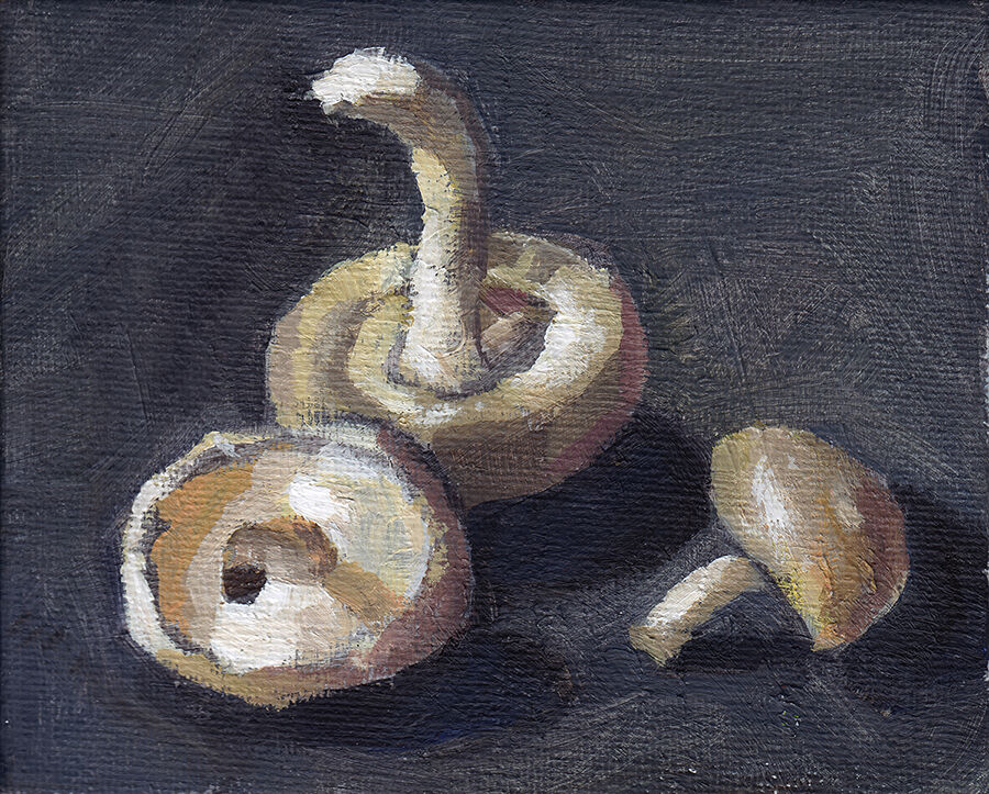 Trio of Shiitake Mushrooms