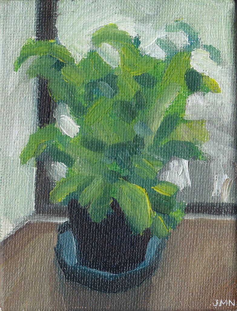 Tiny Basil Plant