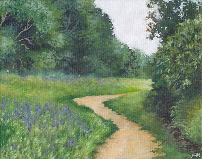 a footpath winding through a meadow, which has long grasses and purple flowers growing. trees line the sides of the path. the sky is white and overcast.