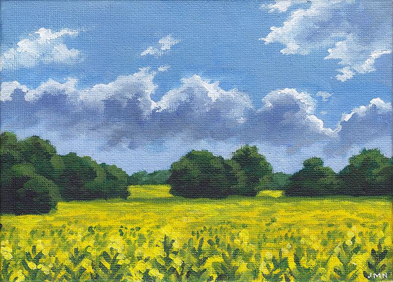 Yellow Field, Summer