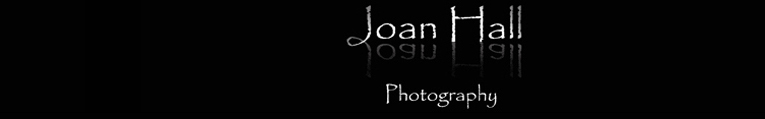 Joan Hall  Photography