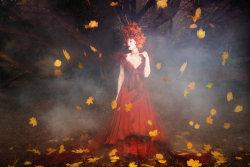 As Autumn Fades