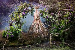 Gatekeeper to Enchantment