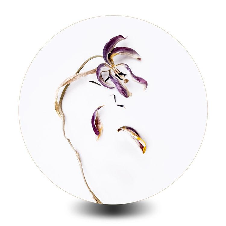 Circular Tulip 1