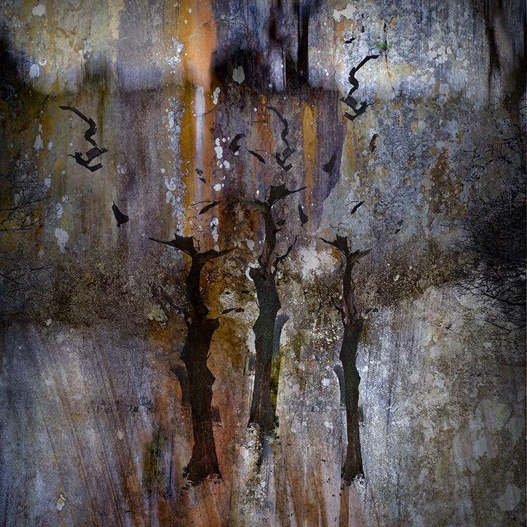 Hodge Close Quarry 5