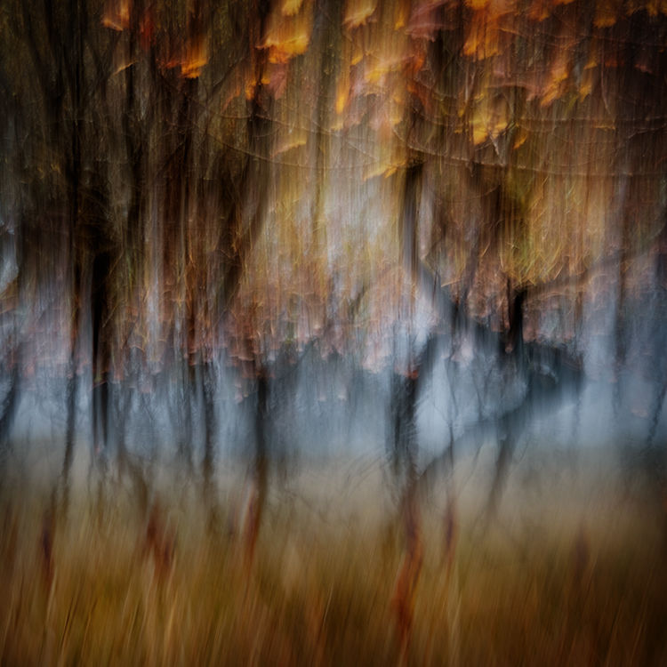 Llanberis Autumn 9