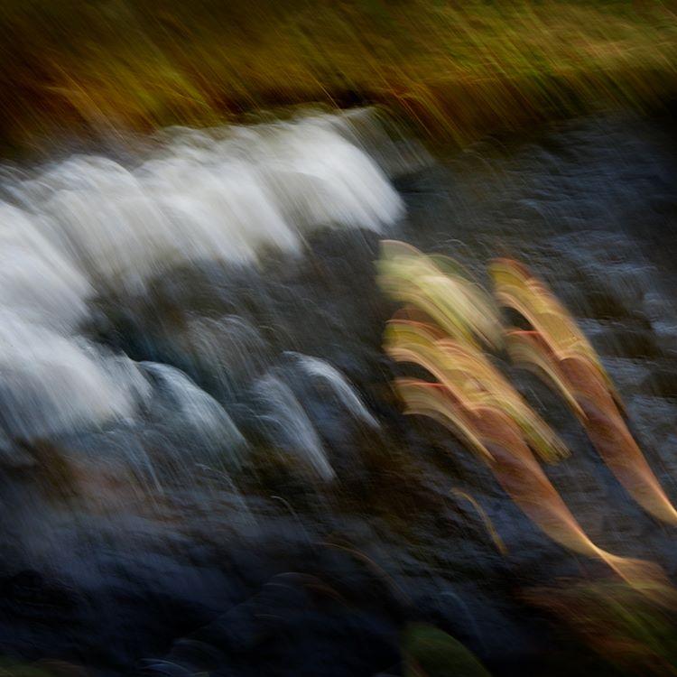 Llyfni Water Spirits