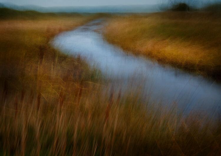 Malltraeth Marsh