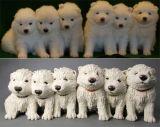 Cocopups - Samoyed Pup Huddle, Commission 2013