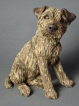 Border Terrier 2013