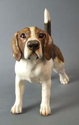 Beagle 2012
