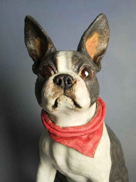 Boston Terrier 2012