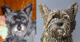 Buffy, Cairn Terrier, Commission 2012