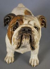 Bulldog 2012
