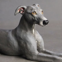 Frank Whippet, Commission 2016