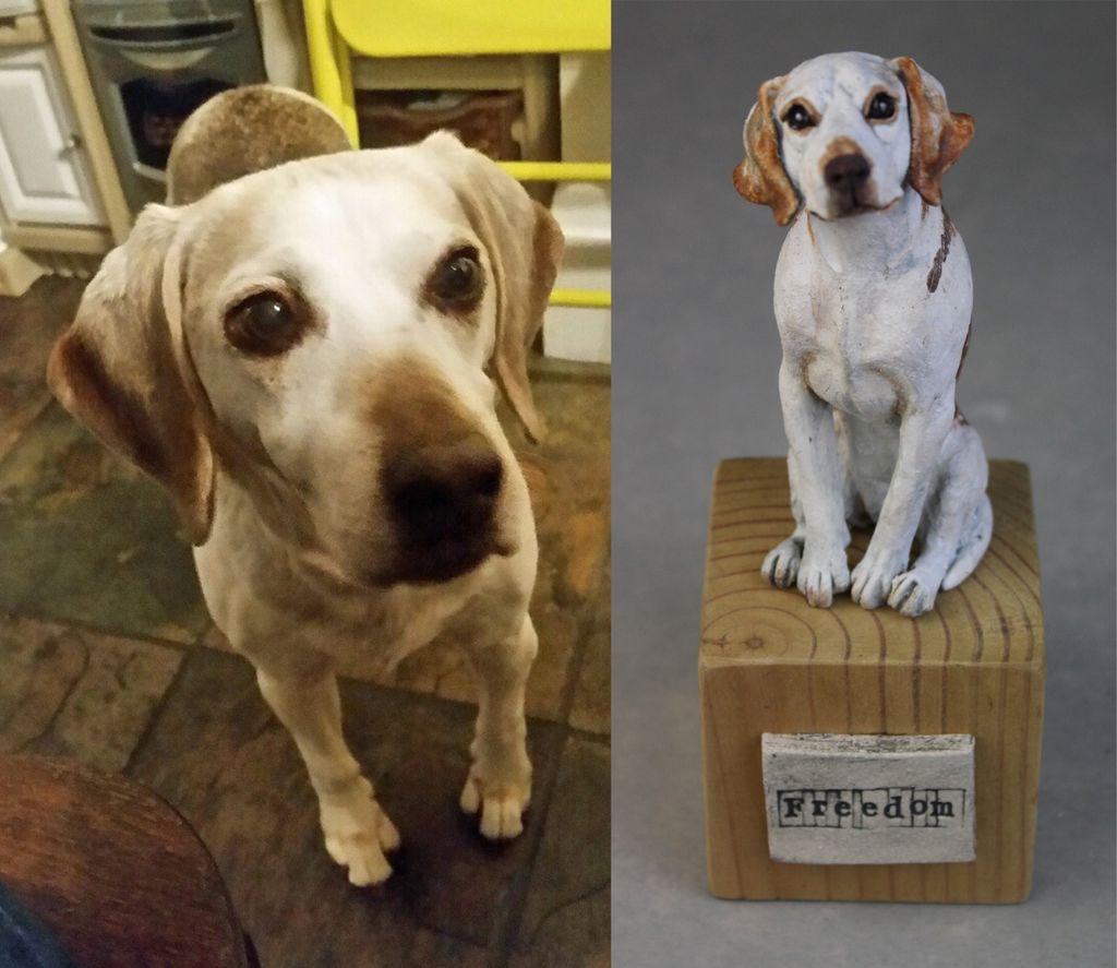Freedom the Beagle, commission 2019