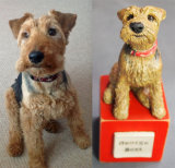 George Best Welsh Terrier, Commission 2014