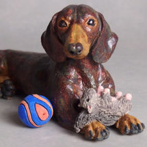 Harvey Dachshund with his favourite Squirrel & Ball 2018