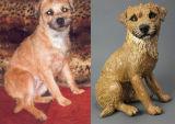 Josie, Border Terrier Commission 2012