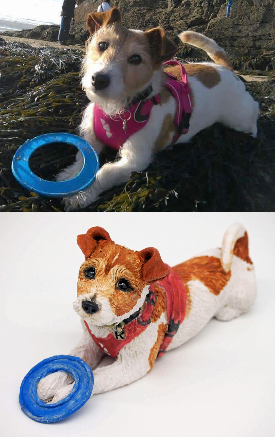 Kernow the Jack Russell Terrier, commission 2020