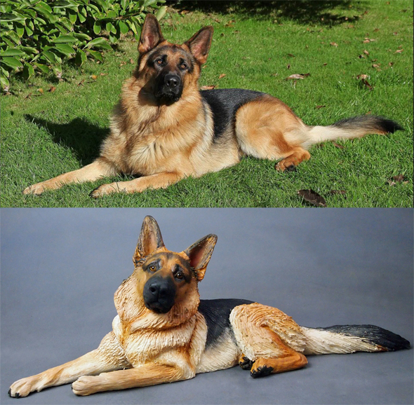 Riley GSD, Commission 2014
