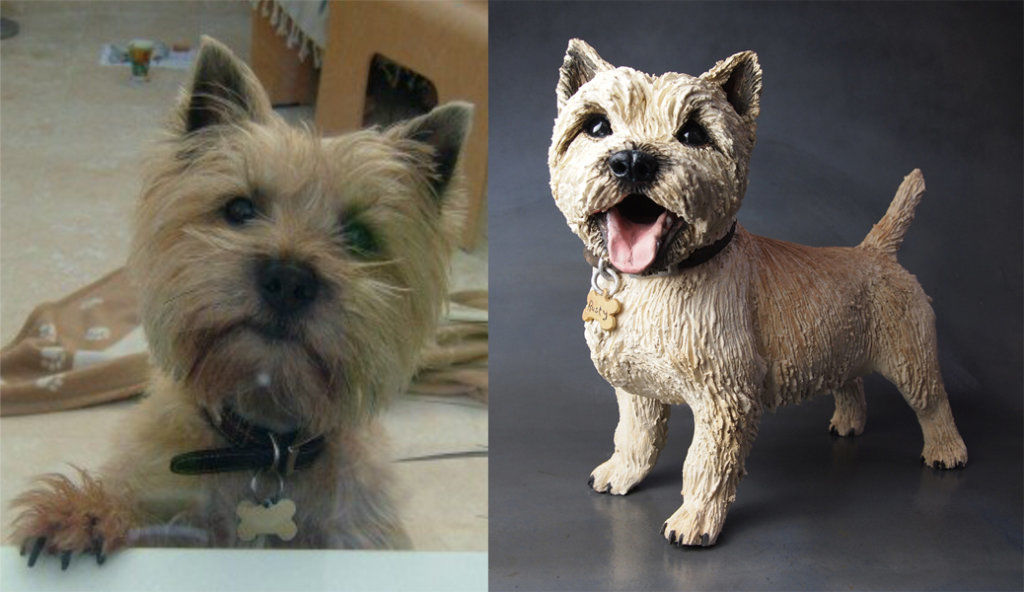 Rusty Cairn Terrier, Commission 2016