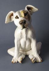 Sad Pup 2012