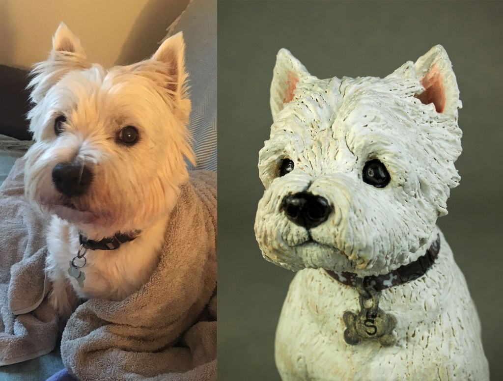 Scooby Westie, Commission 2019