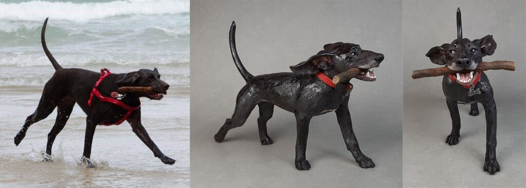 Taz Pointer on the beach, Commission 2020