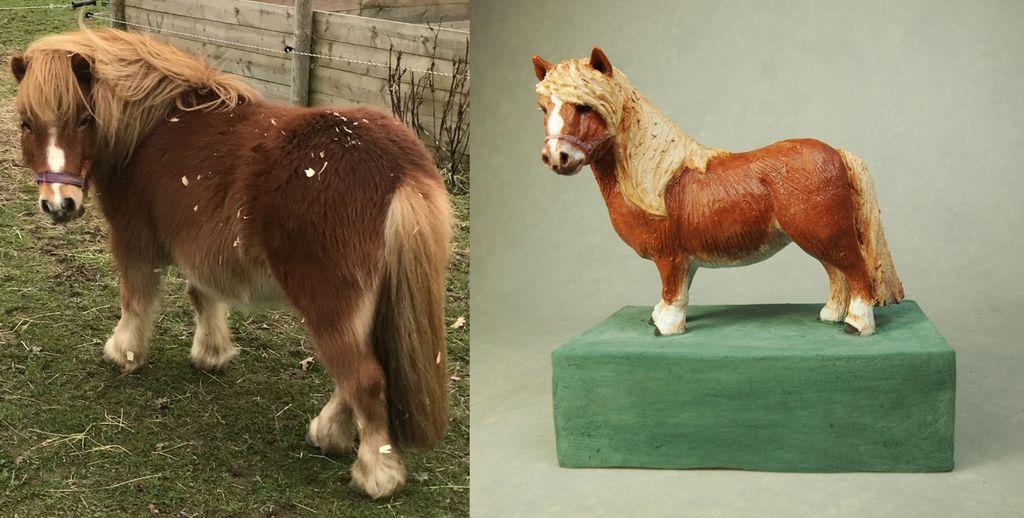 Woodchip, Shetland Pony, Commission 2019