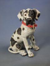 Great Dane Pup 2011