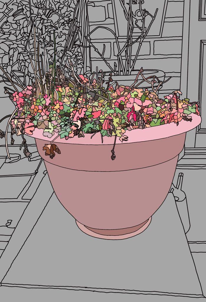 Autumn Flowers In Tub