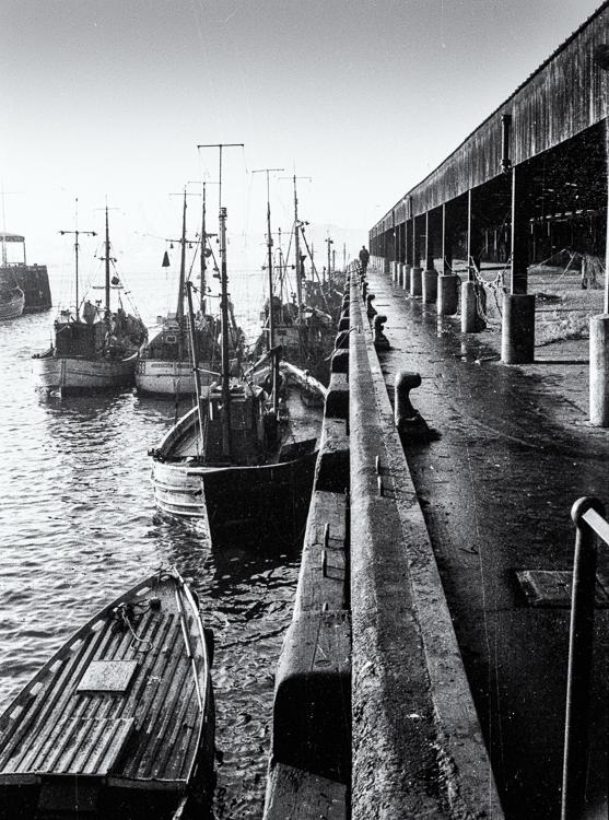 North Shields Fish Quay 1