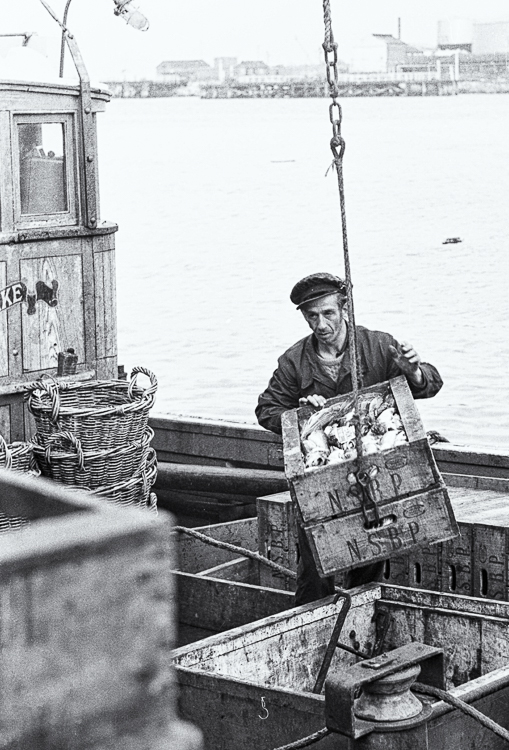 North Shields Fish Quay unloading boxes 2