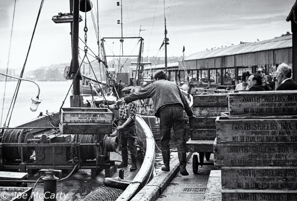 North Shields Fish Quay unloading boxes 3