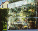 """My Greenhouse"" Joseph McWilliams"
