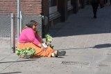 Seller of Flowers