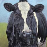 Fresian Cow 2
