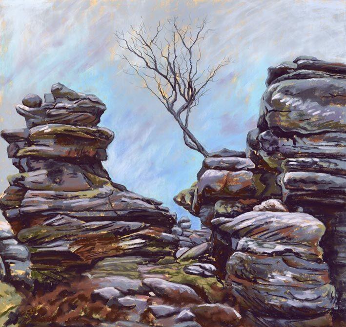 Lone Tree, Brimham Rocks
