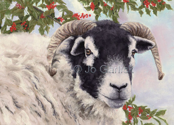 Sheep and Holly