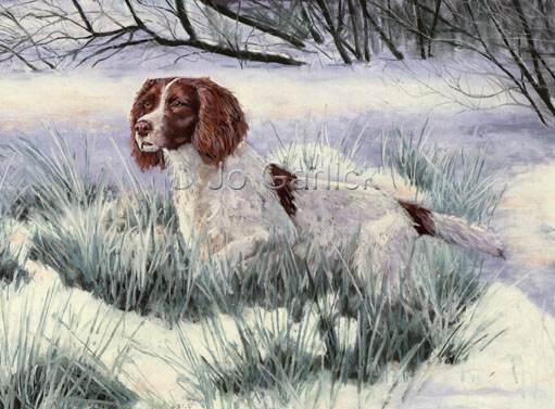 Winter Springer