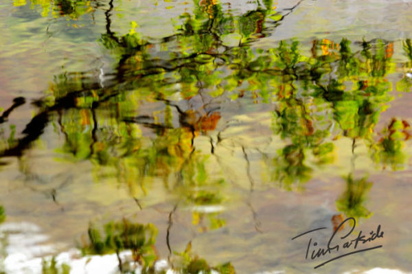 autumn reflection in water, Snowdonia, Wales