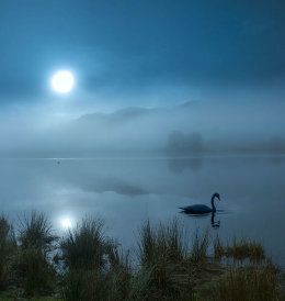 misty lake, Rydal