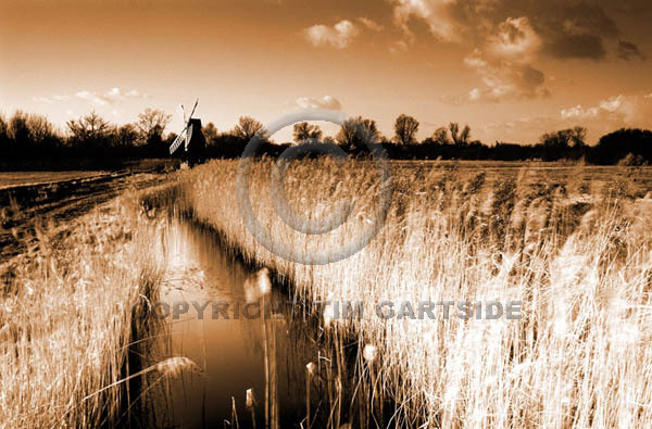 wicken fen sepia