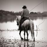 Camargue Cowboy
