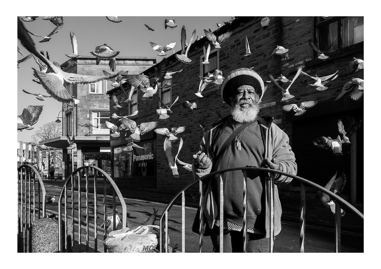 Pigeon Man A4 print Sold Out