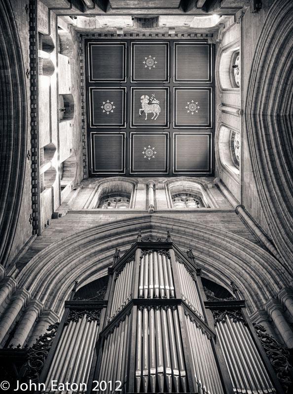 Crossing and Organ