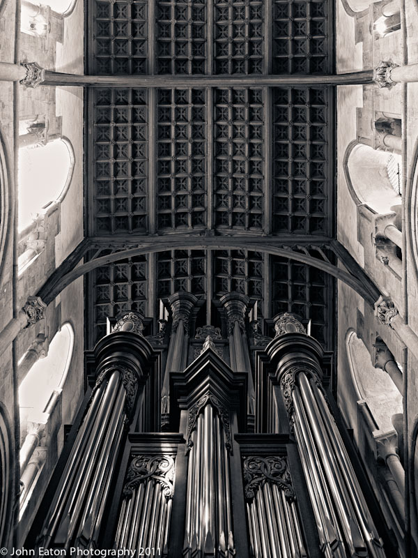 Organ and Nave Vault